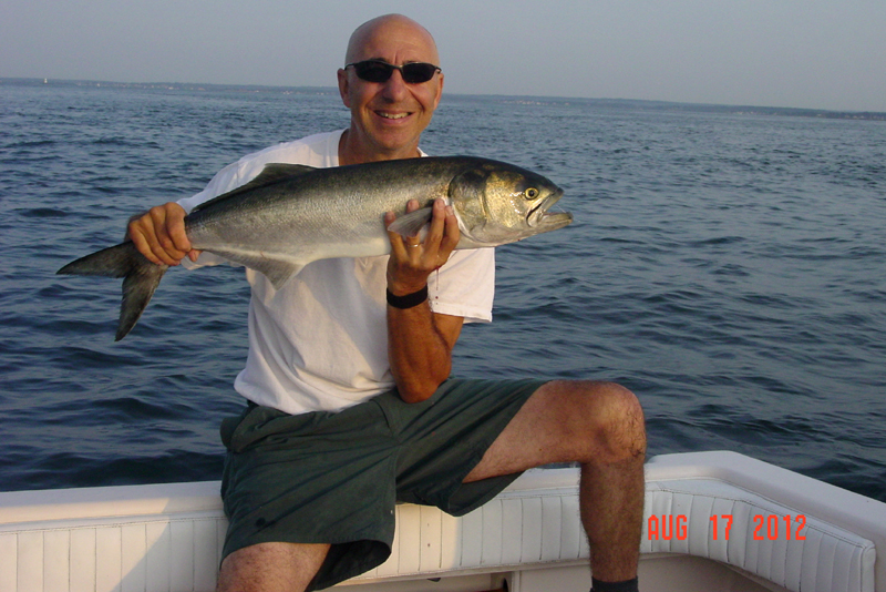 Fall Bluefish